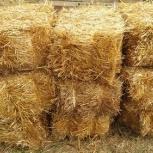 Солома пшеницы в тюках (брикетах). Краснодар, Краснодар