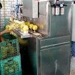 Машина для яблоко чистки и удаления сердцевины 400 кг/час, Краснодар