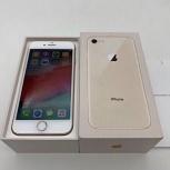 iPhone 8, Краснодар