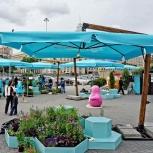 Зонт на боковой стойке 3х3 м., Краснодар