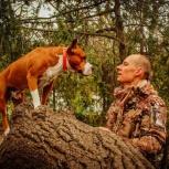 Дрессировка собак Послушание Кинолог в Краснод-кр, Краснодар