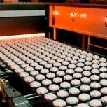 Оборудование для производства зефира, Краснодар