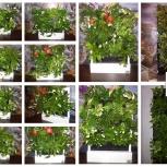 Красивый бизнес gardenwall, доступен каждому (ищем представителей), Краснодар