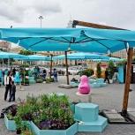 Зонт на боковой опоре 4.5 х 4.5 м., Краснодар