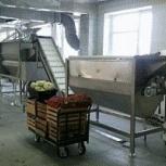 Линия для переработки *твёрдых* овощей !, Краснодар